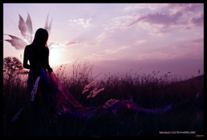 fairy_sunset_05_by_evilopi8